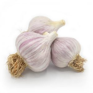 KMB Farms--Duganski Garlic (Bulbs)