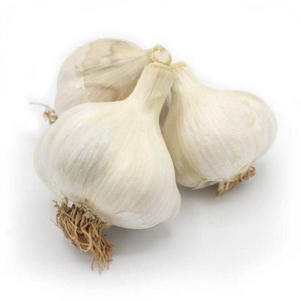 KMB Farms--Elephant Garlic (Bulbs)