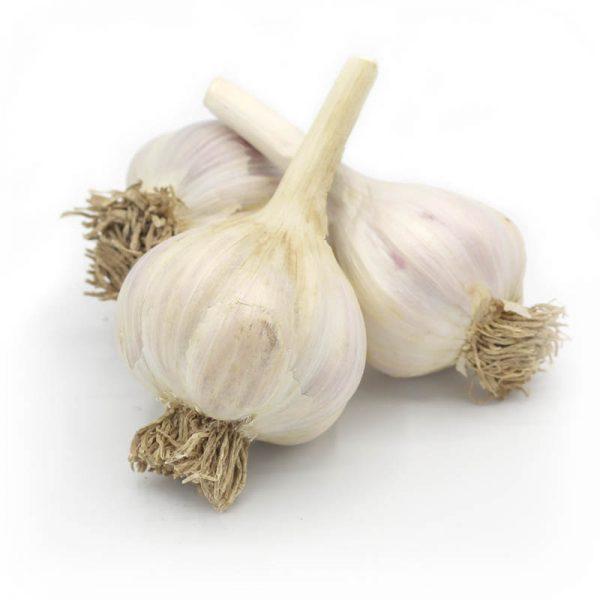 KMB Farms--Georgia Fire Garlic (Bulbs)