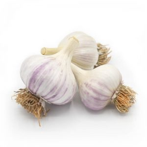 KMB Farms--Music Garlic (Bulbs)