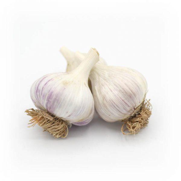 KMB Farms--Korkon Red Garlic (Bulbs)
