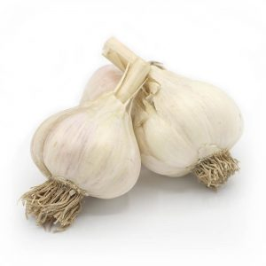 KMB Farms--Northern White Garlic (Bulbs)
