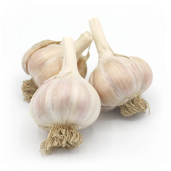 KMB Farms--Thai Purple Garlic (Bulbs)