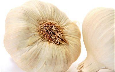 A Garlic Clove A Day…
