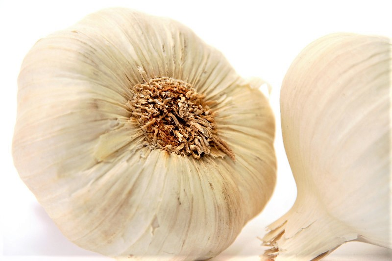 A Garlic Clove A Day…