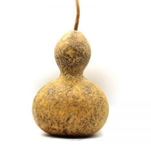 KMB Farms--Naked Bird House Gourd